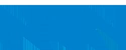 Логотип NTN